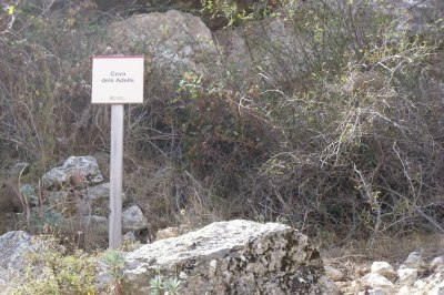 Cova dels Adells