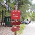Vía verde - Tortosa - Benifallet