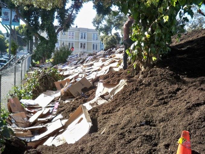 Cardboard breaking down in soil
