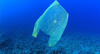 Biodegradable bag in the ocean
