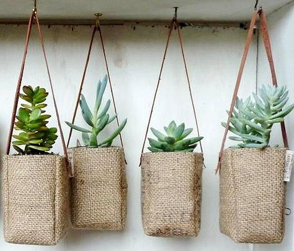 Coffee bag planter