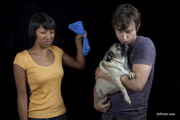 Pet waste pollution (3)