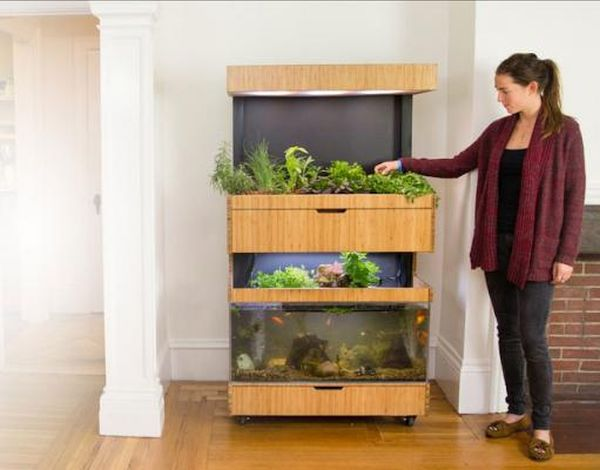 Smart Indoor Garden Grove 2