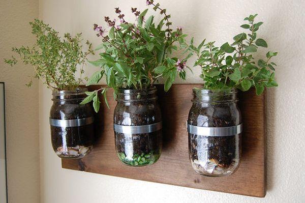 Mason jar garden