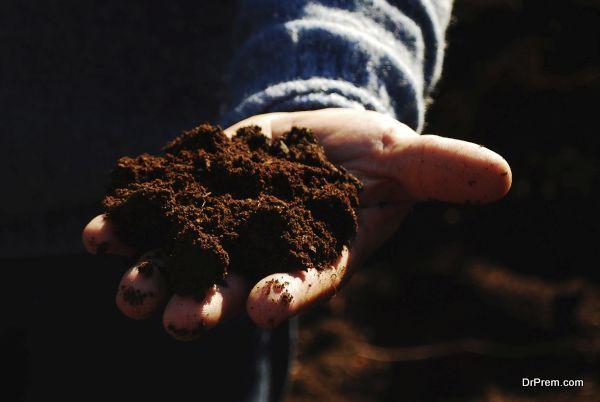 having compost ready (5)