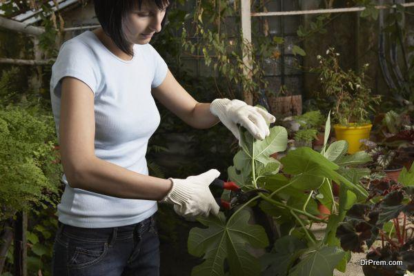 best green jobs (3)