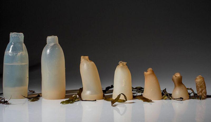 Ari Jonsson water bottle