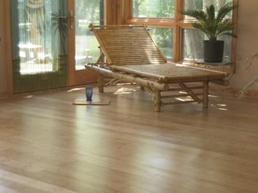 Fresh laid back bamboo
