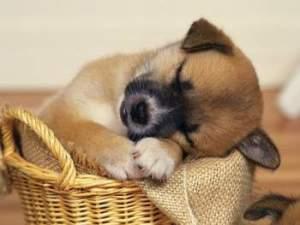 sleep well for self-care