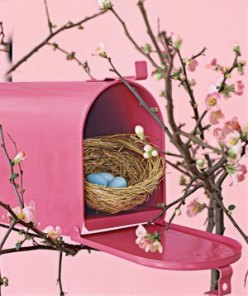 Attract new neighbors by nailing an old mailbox to a branch and watch house finches and wrens flock to feather their nests.