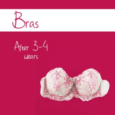 060215_washguide-bra