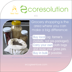 Eco resolutions (shopping) | ecogreenlove
