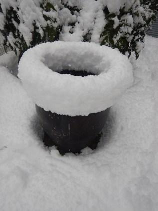 2nd week under snow