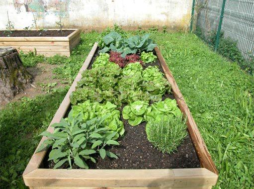 Imparare dagli agricoltori, al mercato coperto di Como