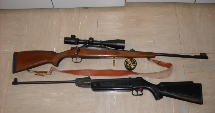 Intervento antibracconaggio messo a segno dalla Polizia Provinciale nell'Intelvese