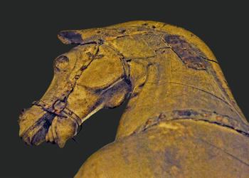 Mostra/ A cavallo della storia e dell'arte