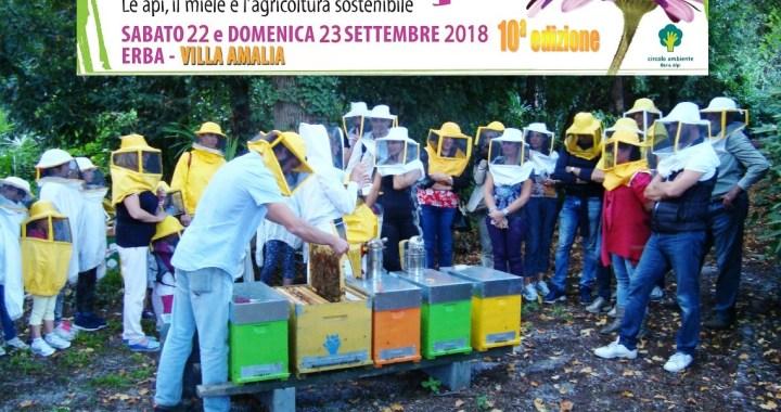 22 e 23 settembre/ Festa delle api