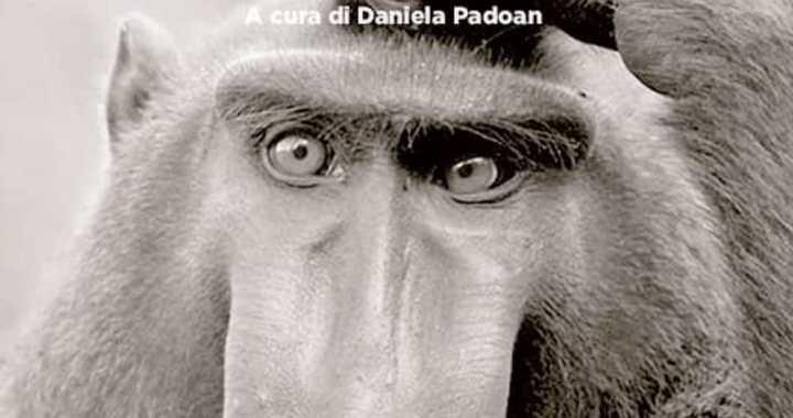 Libri/ Daniela Padoan/ Giustizia sociale e ambientale