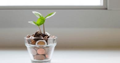 Quando un debito è sostenibile?
