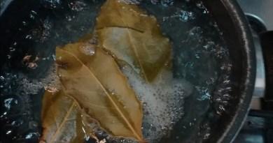 Acqua e alloro, fra mito, benefici e proprietà afrodisiache