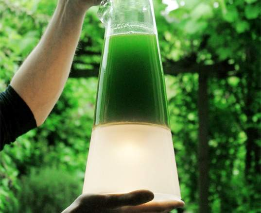 latro l mpara de algas que produce electricidad por la. Black Bedroom Furniture Sets. Home Design Ideas