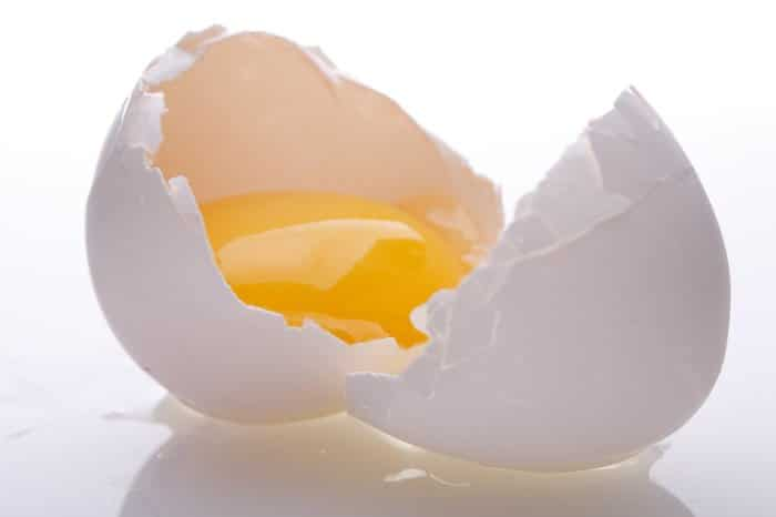 Huevo crudo prohibido para los perros