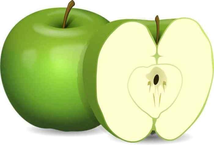 Corazon de las manzanas prohibido para los perros