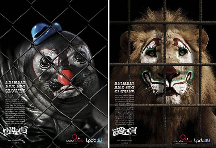 Los Animales No Son Payasos1