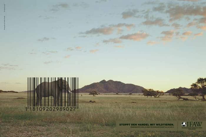 Stop al Comercio de Especies Silvestres1
