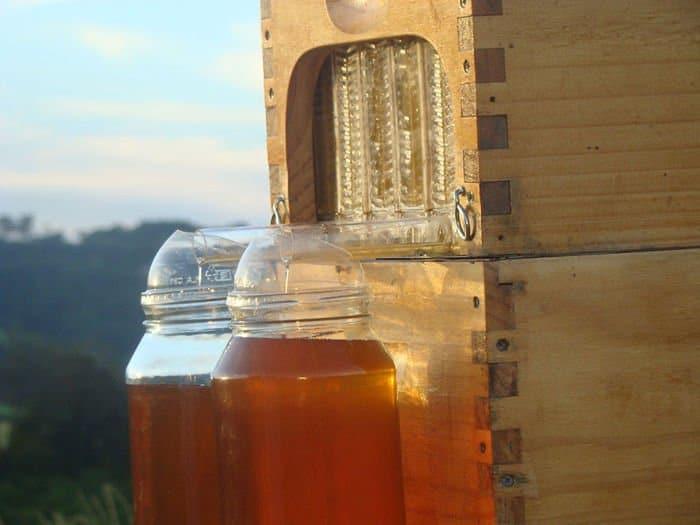 honey-flow-hive