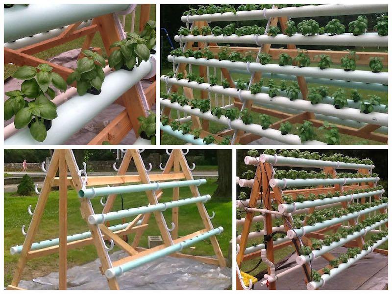 C mo crear un sistema hidrop nico casero con 168 plantas for Materiales para jardines verticales