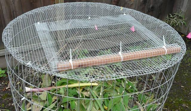 Una sencilla compostadora hecha con tela metálica 3