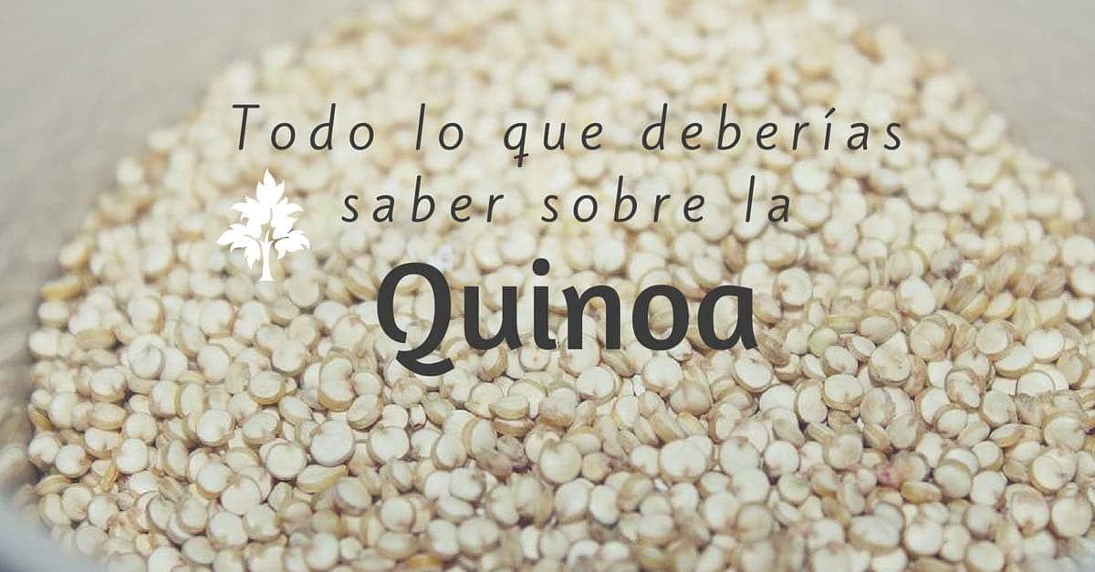 Todo lo que deberias saber sobre la quinoa