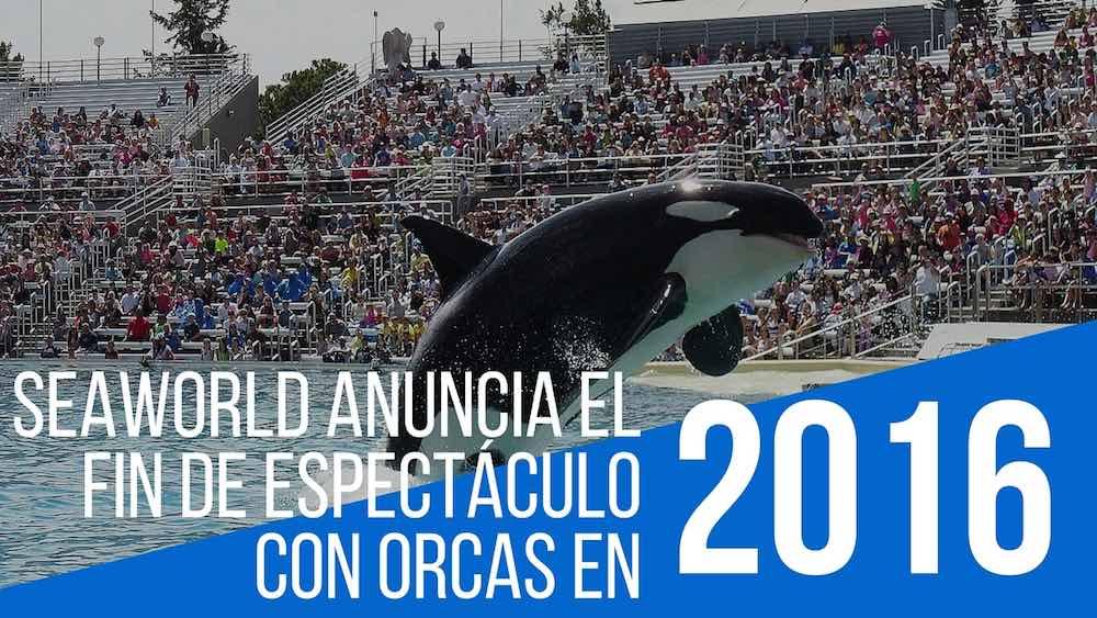 SeaWorld anuncia el fin de espectáculo con orcas