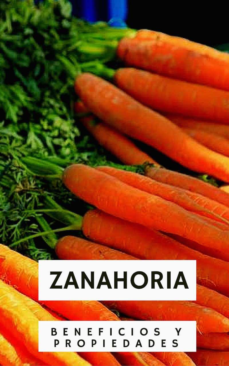 Beneficios y propiedades de la Zanahoria