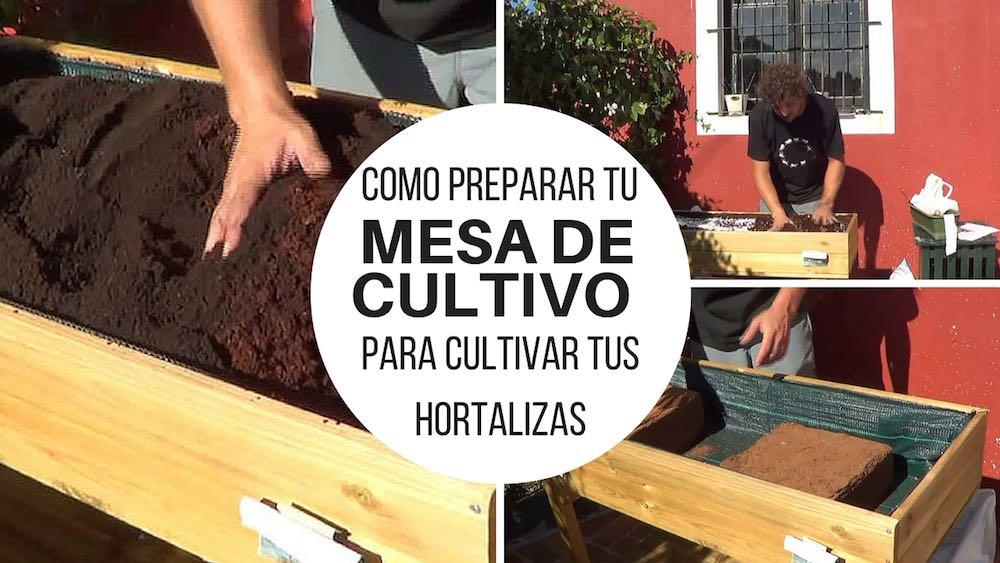 C mo preparar tu mesa de cultivo para cultivar tus hortalizas for Mesa de cultivo casera