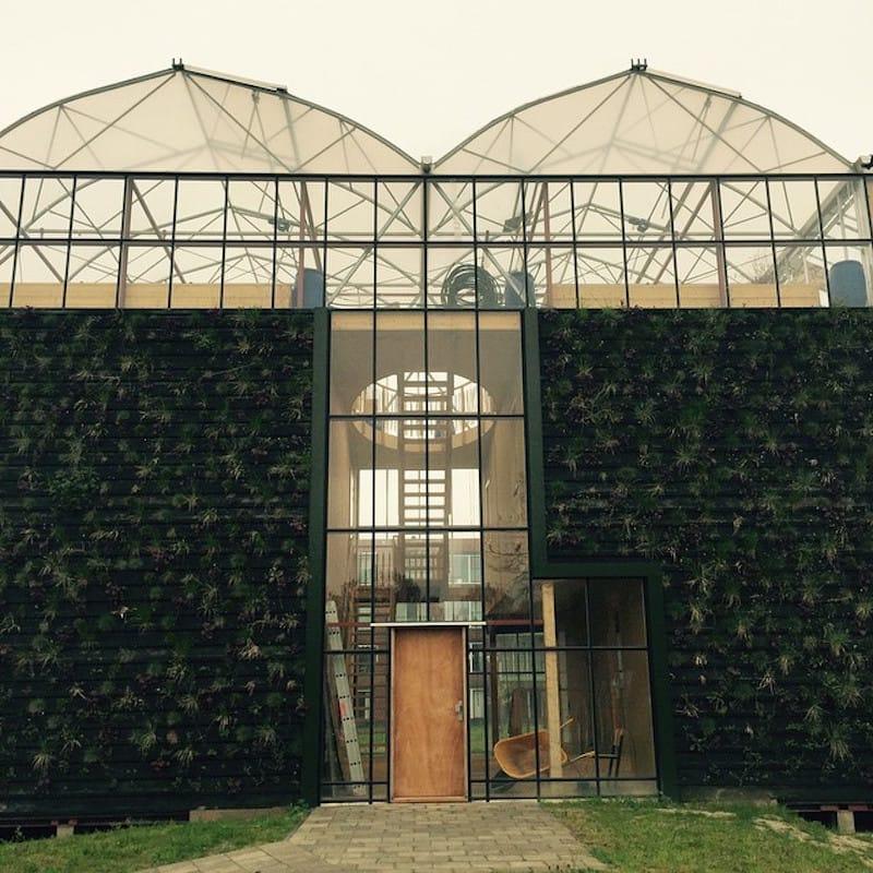 Casa invernadero5