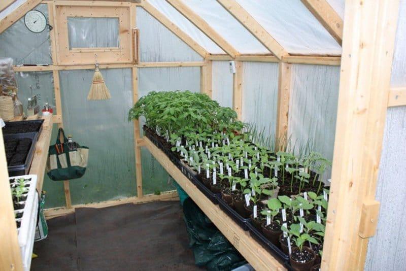 Como construir un invernadero con estructura de madera - Fabricar un invernadero ...