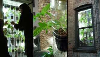 Tabla peridica interactiva que te dice el uso de los diferentes windowfarm jardn hidropnico para las ventanas urbanas urtaz Images