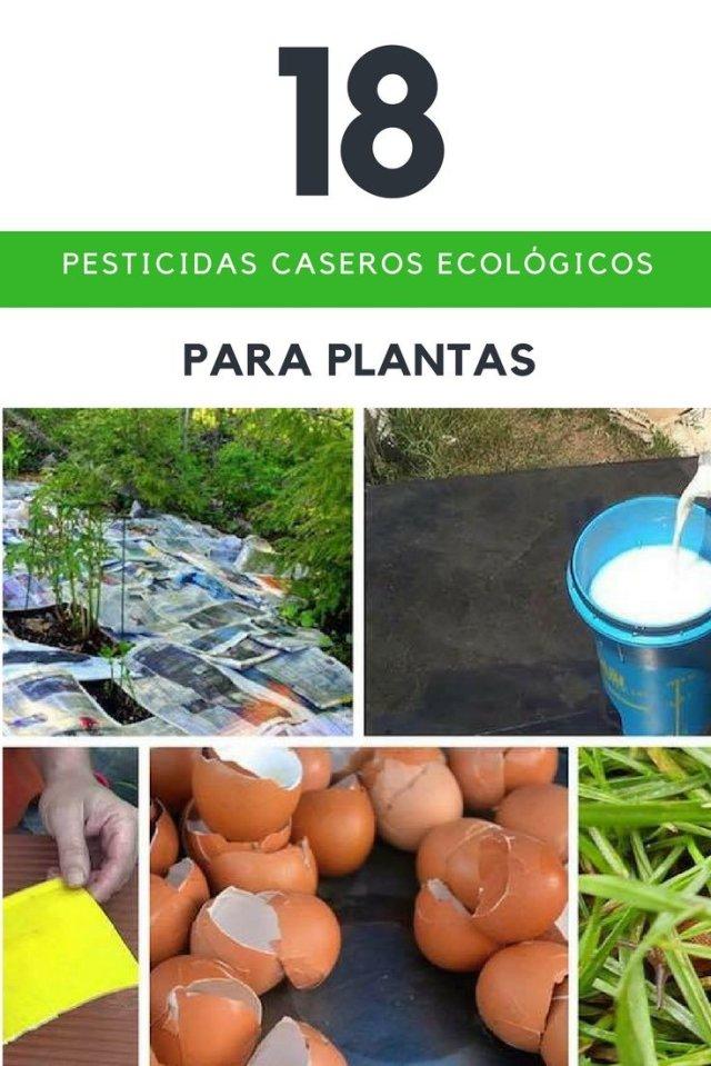 Pesticidas, Insecticidas, repelentes y fungicidas caseros ecológicos