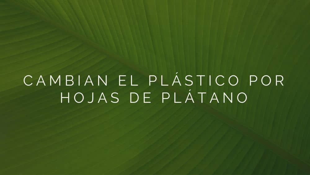 plastico-por-hojas-de-platano
