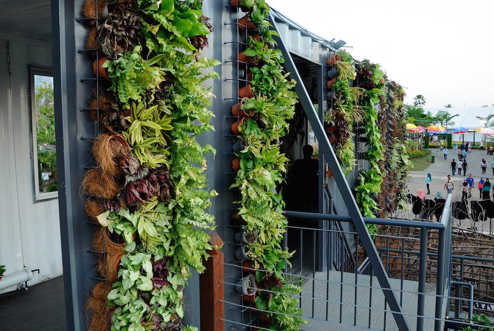 7 beneficios de tener un jard n o huerto vertical en casa for Beneficios del insecticida casa jardin