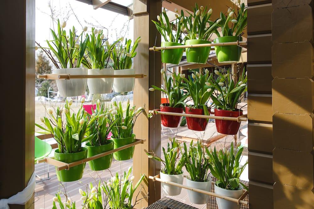 7 beneficios de tener un jard n o huerto vertical en casa for Casas para jardin de pvc