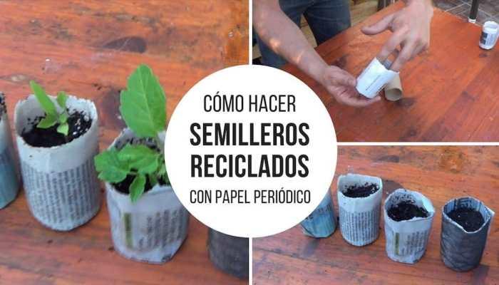 Semilleros-reciclados-papel-periodico