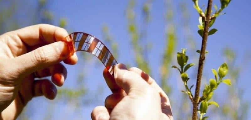 Células solares baratas de plástico