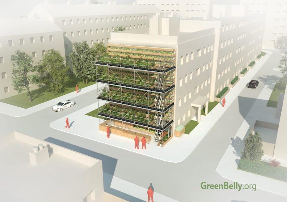GreenBelly, huertos verticales urbanos