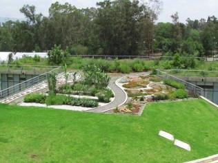 Vista de la azotea verde. (Foto: Juan Martínez Cruz)