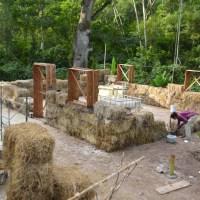 Fabricando ladrillos ecológicos