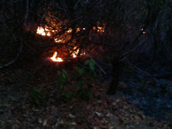 Los Besotes incendio 7