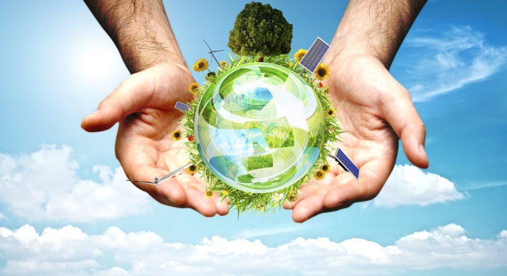 Ecologia significato